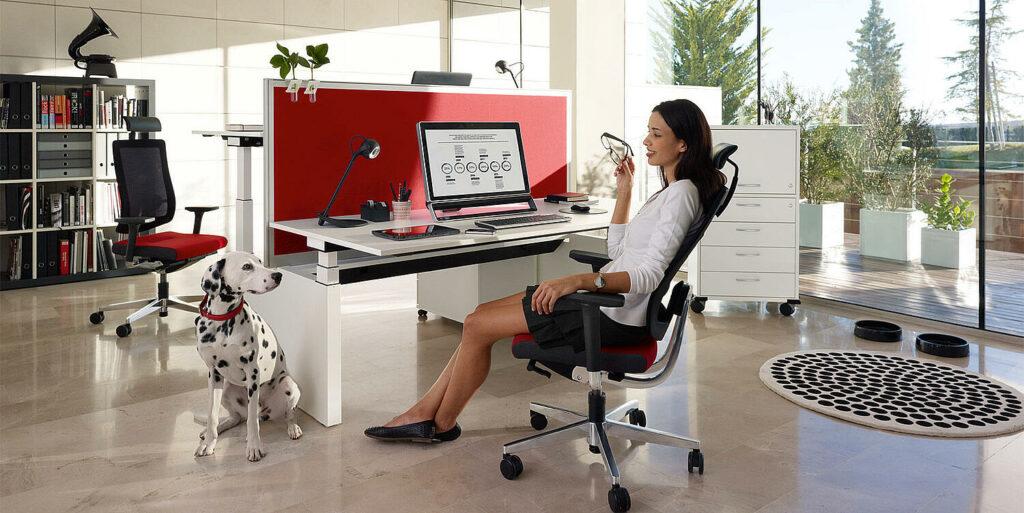 siege de bureau ergonomique table reglable hauteur